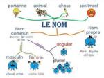Les cartes mentales : un atout pour l'apprentissage